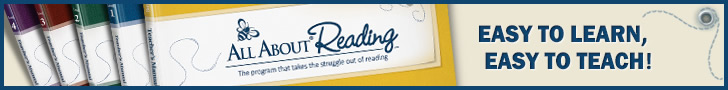 dyslexia reading success