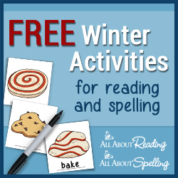 Winter Practice Activities for Reading and Spelling